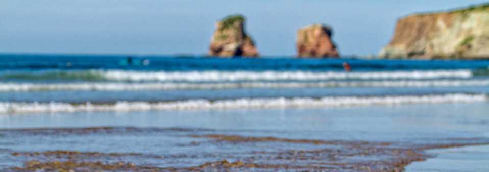 Réveil Insolite à Biarritz